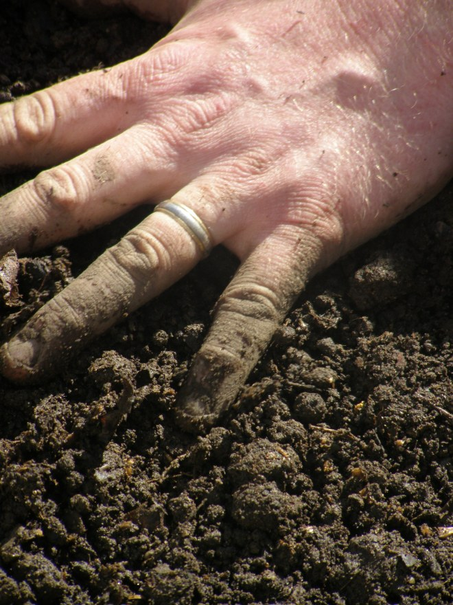 step 6: feel the soil under your hands, under your nails, smell it, and feel satisfied