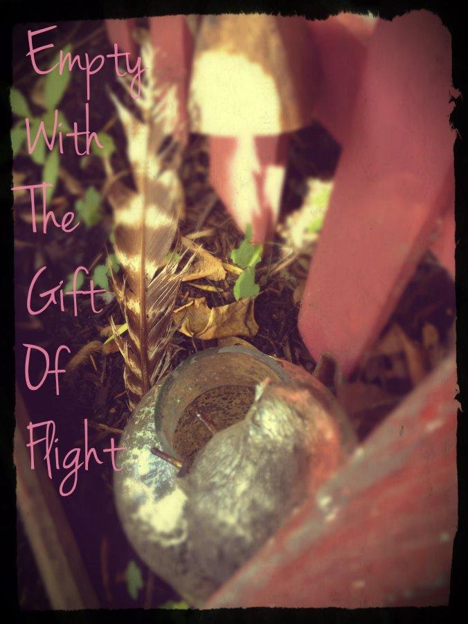 empty with flight