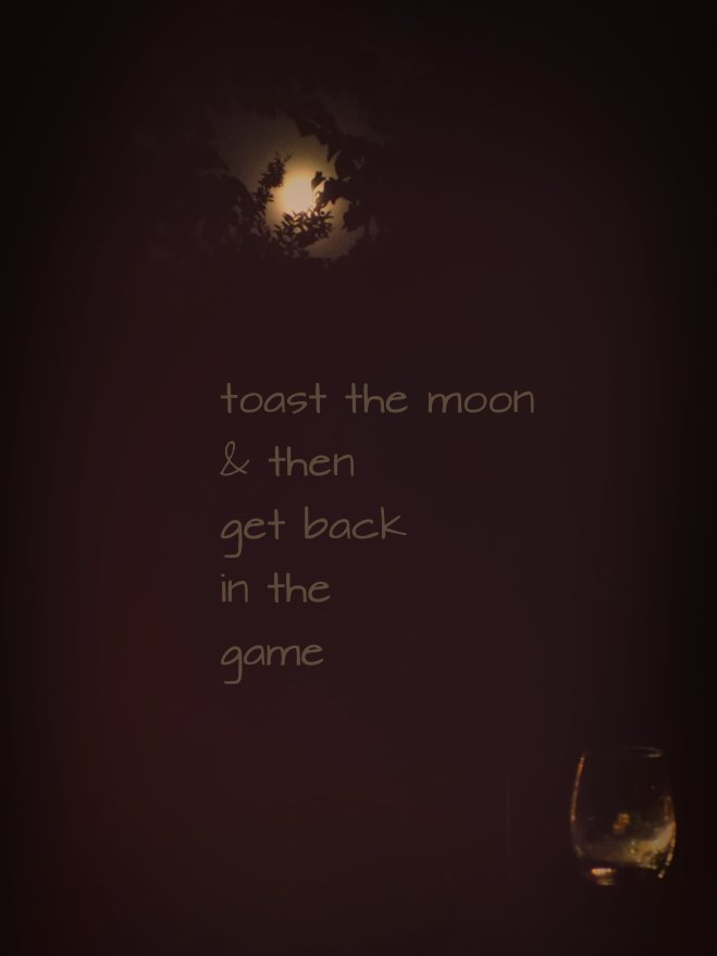 toast the moom